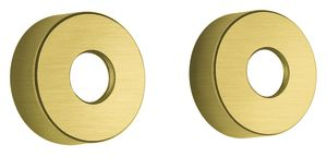 "Shower Accessories Wall Plates 3/4"" (Brushed Brass PVD)"