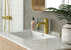 Silhouet Basin Mixer - Small (Brushed Brass PVD)
